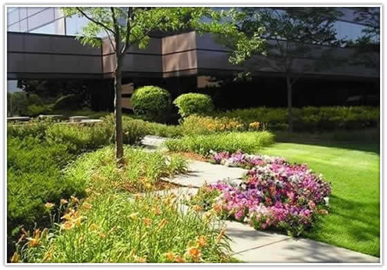 Landscaping Materials Mulch : Landscaping materials topsoil mulch gravel large trees delivery