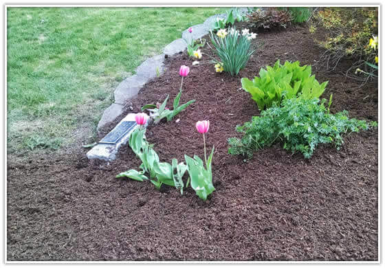 Howards Grove Mulch Installation near me